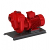 GMP, Self-Priming Centrifugal Pumps, Cast Iron With Bronze Impeller (for Petrol), ATEX Approved