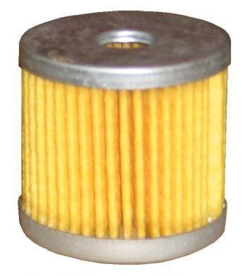 Giuliani Anello 60450 Filter Element, Pleated Paper (OLD TYPE)