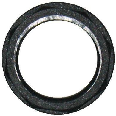 Polypropylene Nut, Flanged, BSP