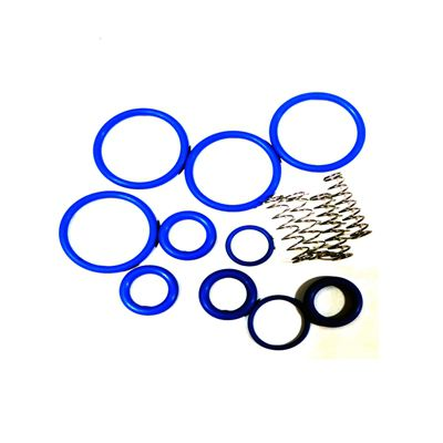 Gammon GTP-8720-31VG, Viper Additive Injection System, Pump Check Valve Repair Kit For +100, Kathon, LI/LI, Stadis 450