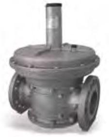 Giuliani Anello FS1B Gas Governor With Integral Filter Unit