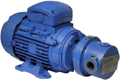 Delta Cast Iron Gear Oil Pumps, Max 120c, 400v 50Hz 3Ph