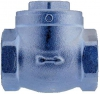 Swing Check Valve, 316 Stainless Steel, FF, 200LB BSP