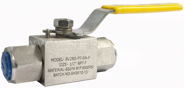 Ball Valve, Lever Handle, 316 Stainless Steel, FF, 6000 PSI BSP